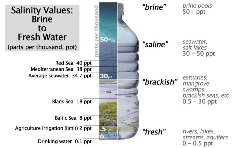 02_water_salinity_diagram